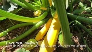Open Class Floriculture Horticulture