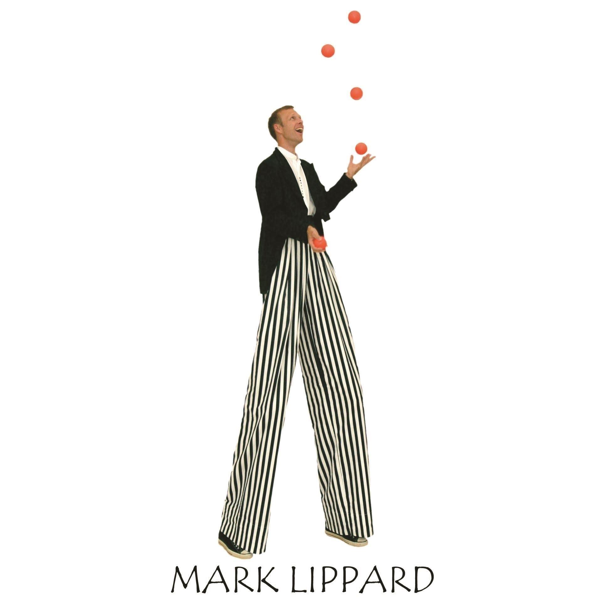 Mark Lippard