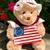 Betsy Ross Teddy Bear