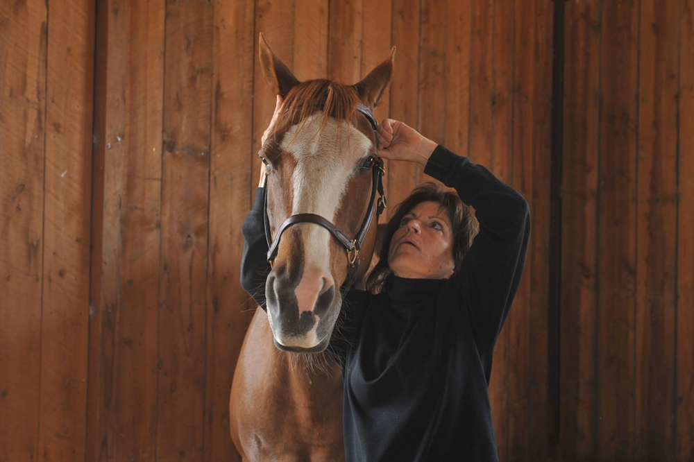 Dr. Patricia Holl, Certified Animal Chiropractor