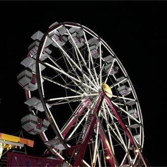 2013 Brazos Valley Fair
