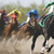 2021 Horse Races Box Seats (May 1st & 9th Package)