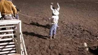 2008 Cass County Fair Rodeo