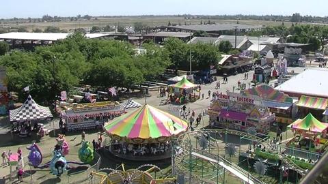 A Day at the Fair!