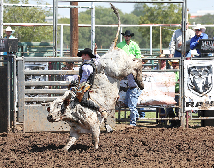 Sunday 9/28/14 Bull Riding