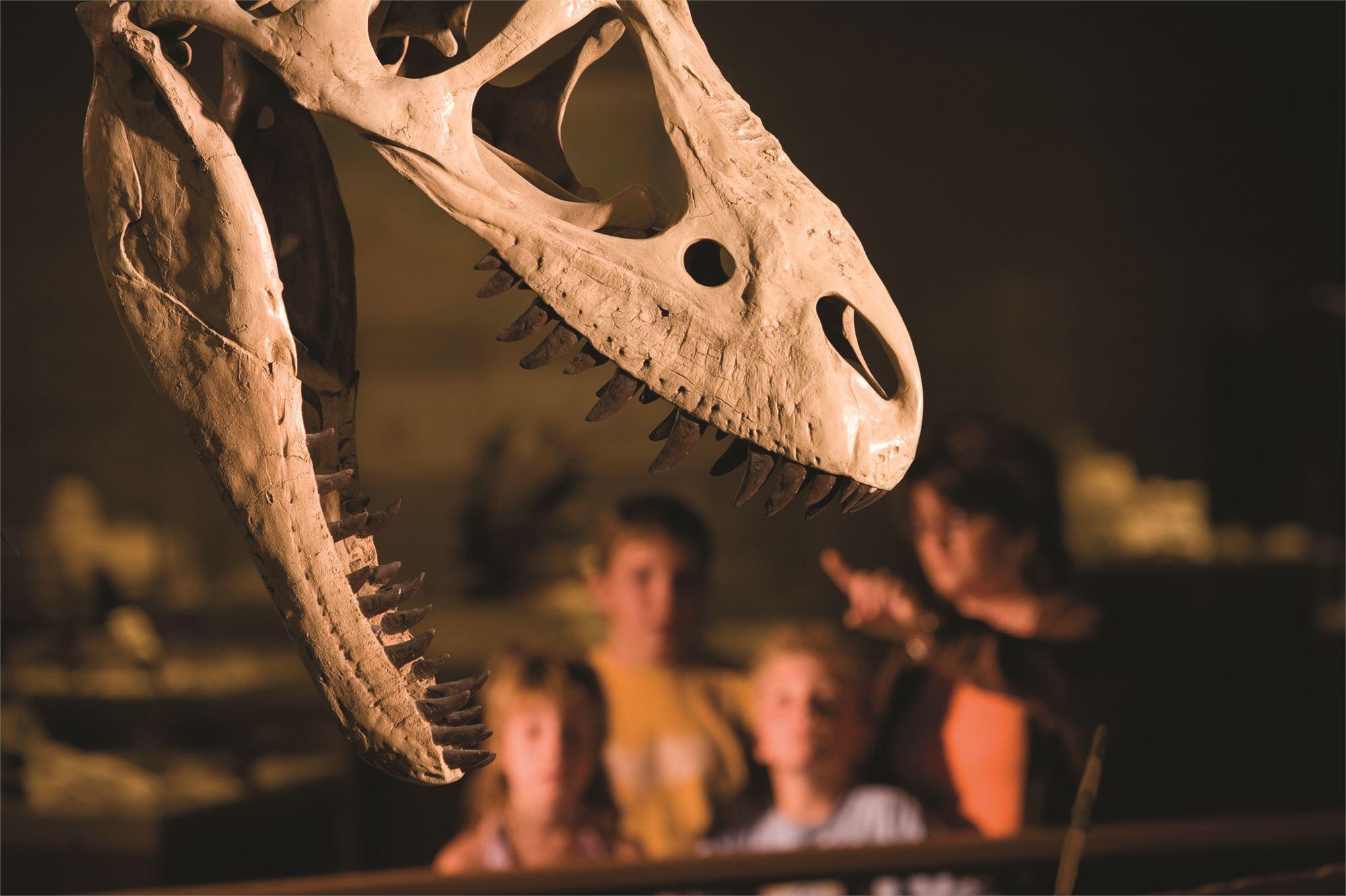 Badlands Dinosaur Museum