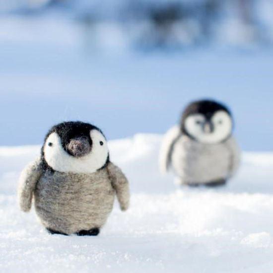 Needle Felt a Baby Penguin