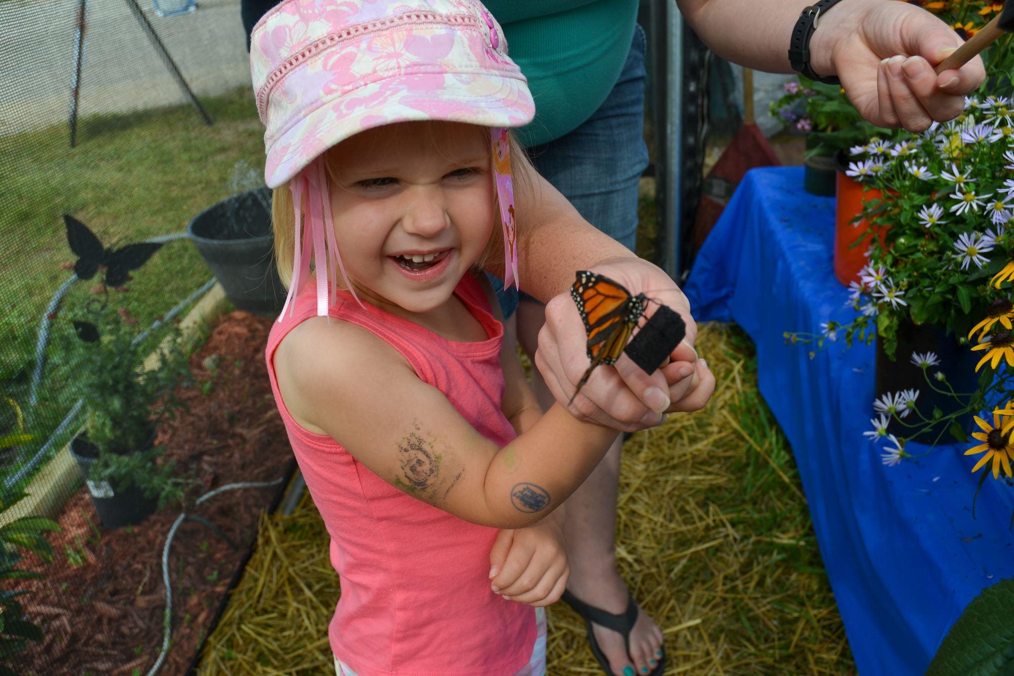 Bee Exhibit & Butterfly Encounter