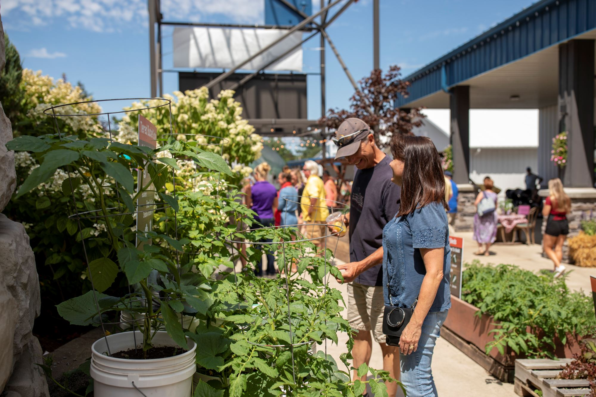 People looking at the Urban Farming Trail