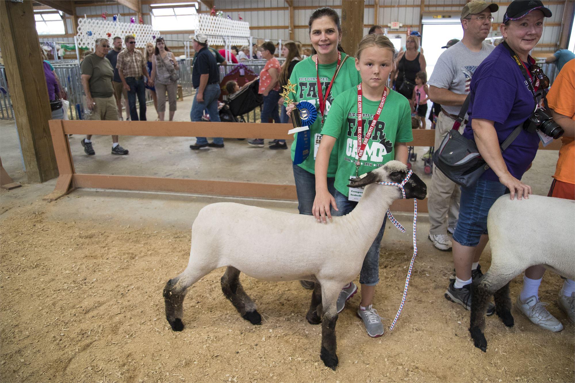 Kids during Fair Camp showing sheep