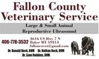 Fallon County Vet