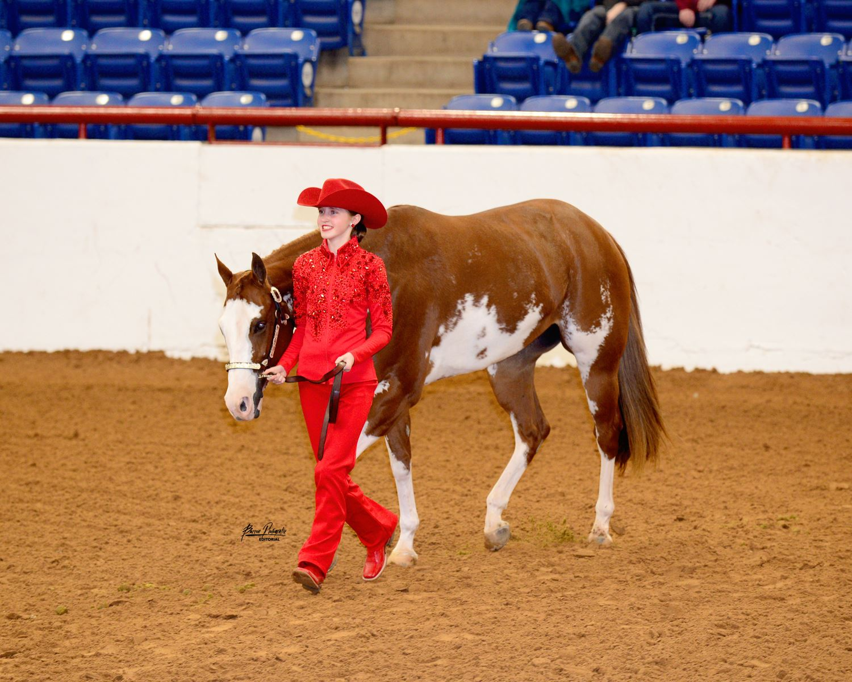 Equine Scholarships