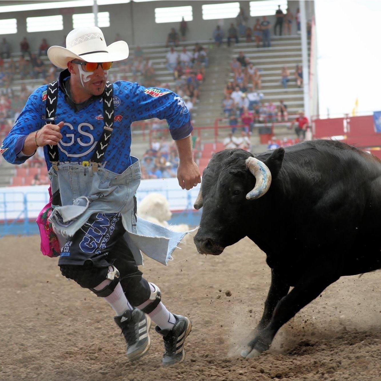American Bull Fighting