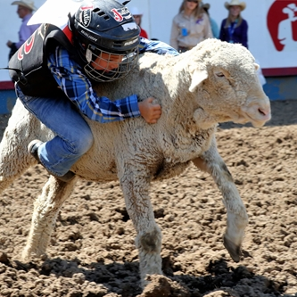 Now Accepting Mutton Bustin Entries