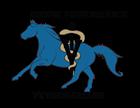 Equine Performance Veterinarians
