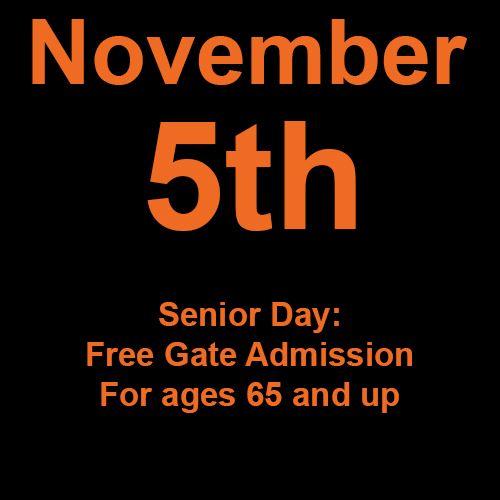 Friday, November 5th
