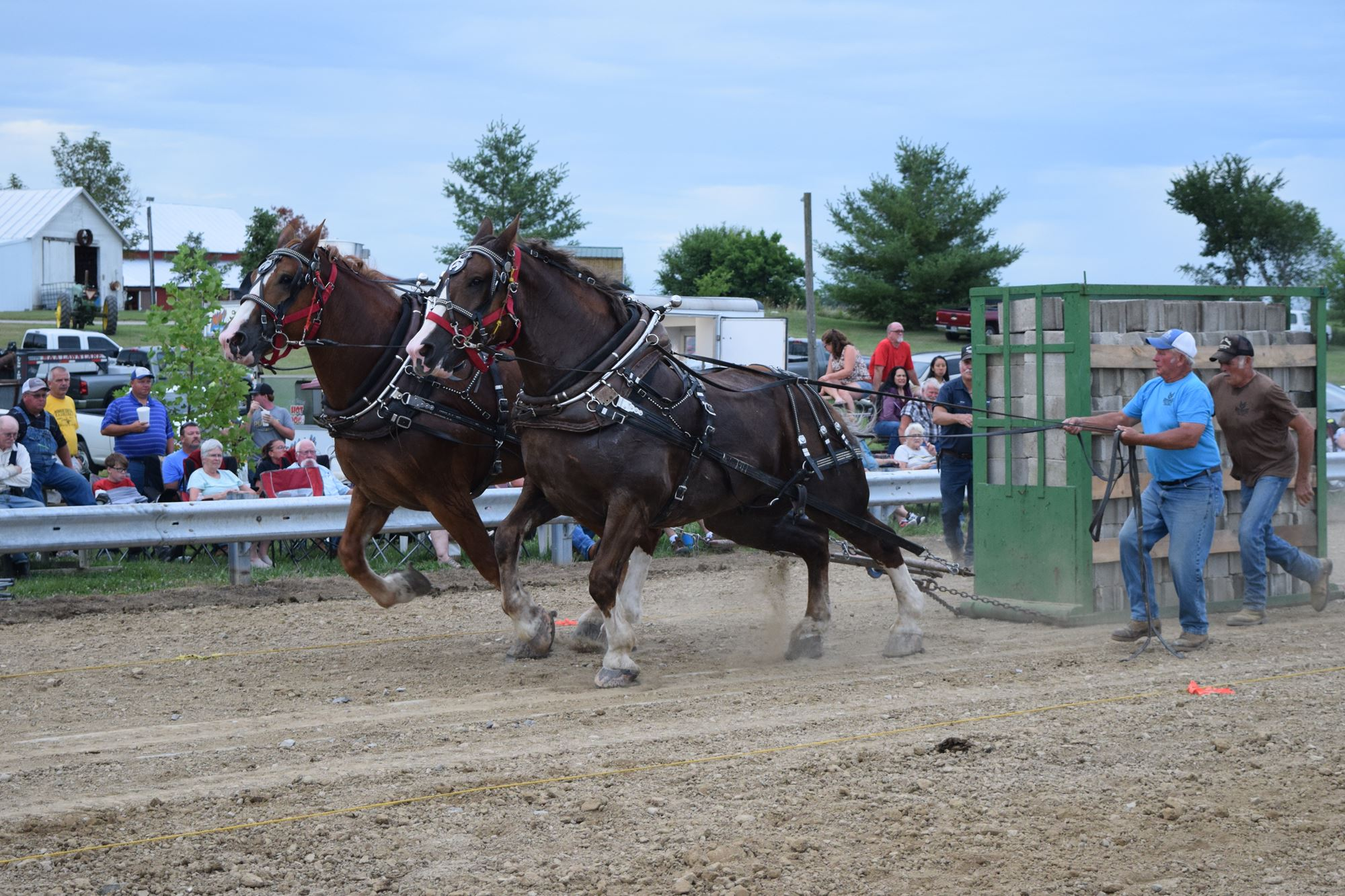 HEAVY WEIGHT HORSE PULL