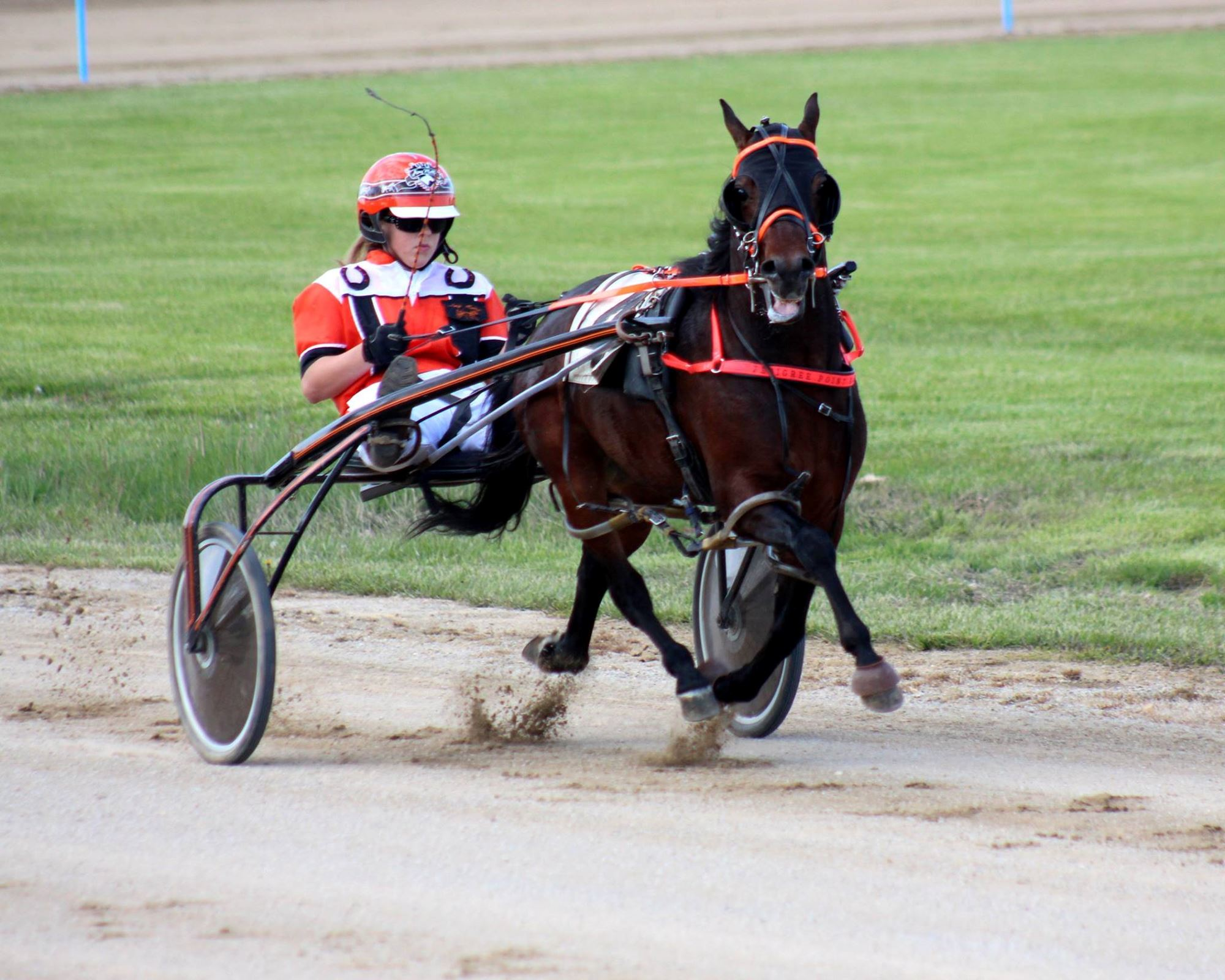 ITPA MIDWESTERN CLASSIC HARNESS RACING