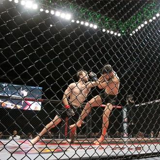Victory Fighting Championship 55