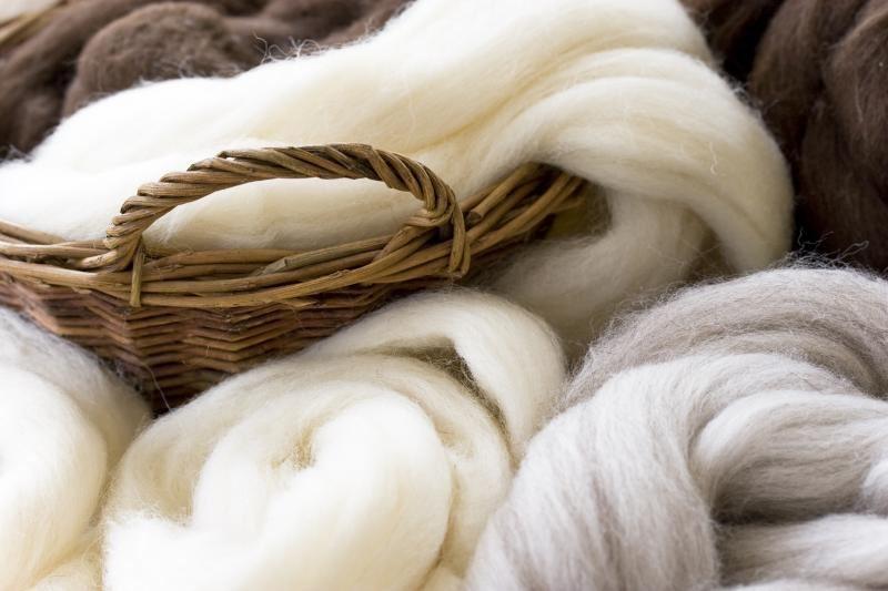 4-H Wool Fiber