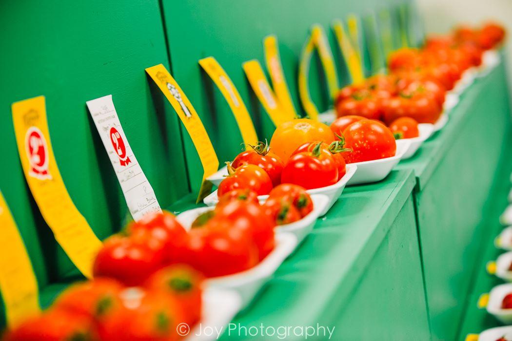 Open Vegetables