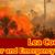 Lea County Disaster/Emergency Preparedness Committee Regular Meeting