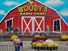 Woody's Menagerie