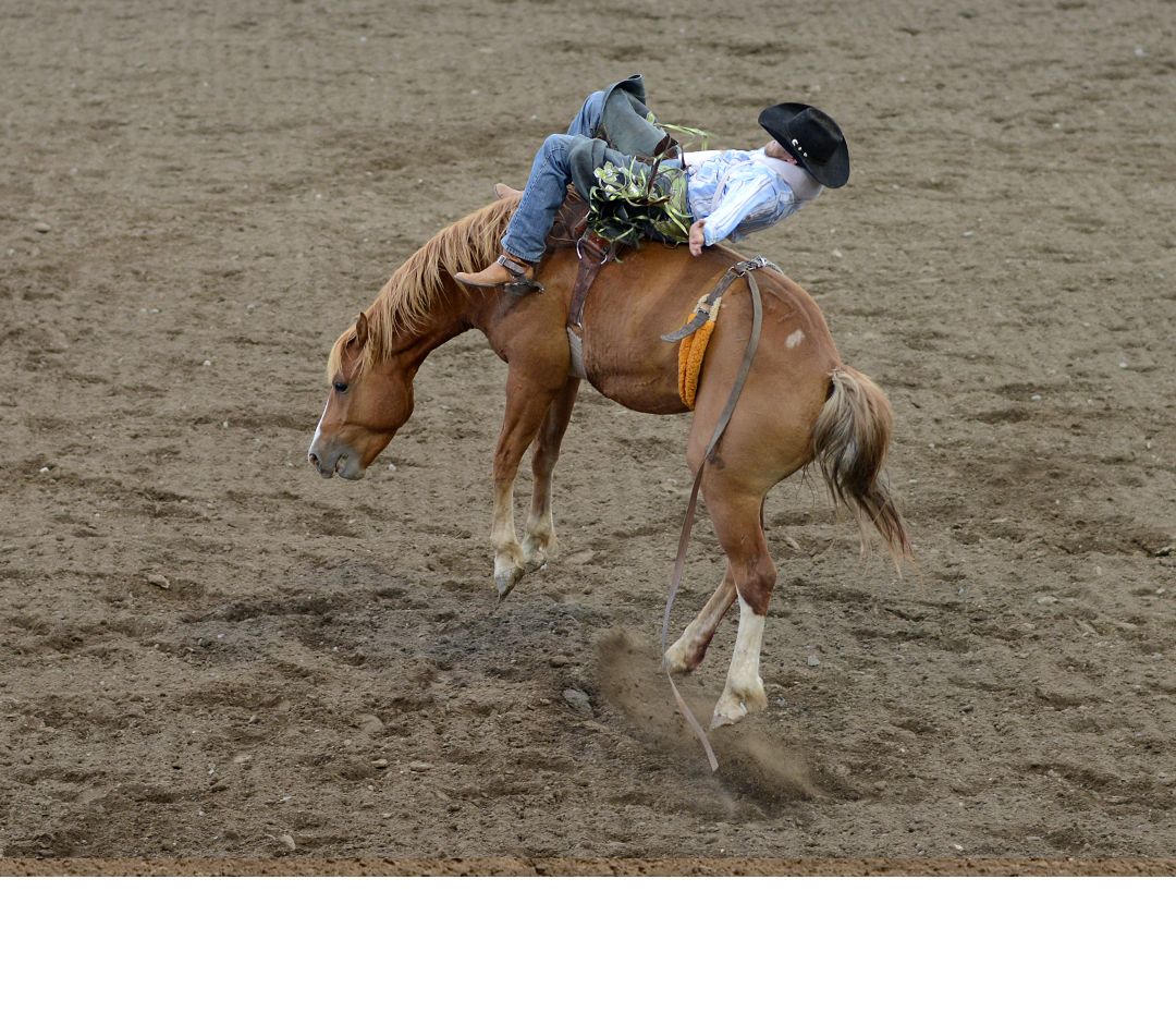 PRCA Rodeo Matinee