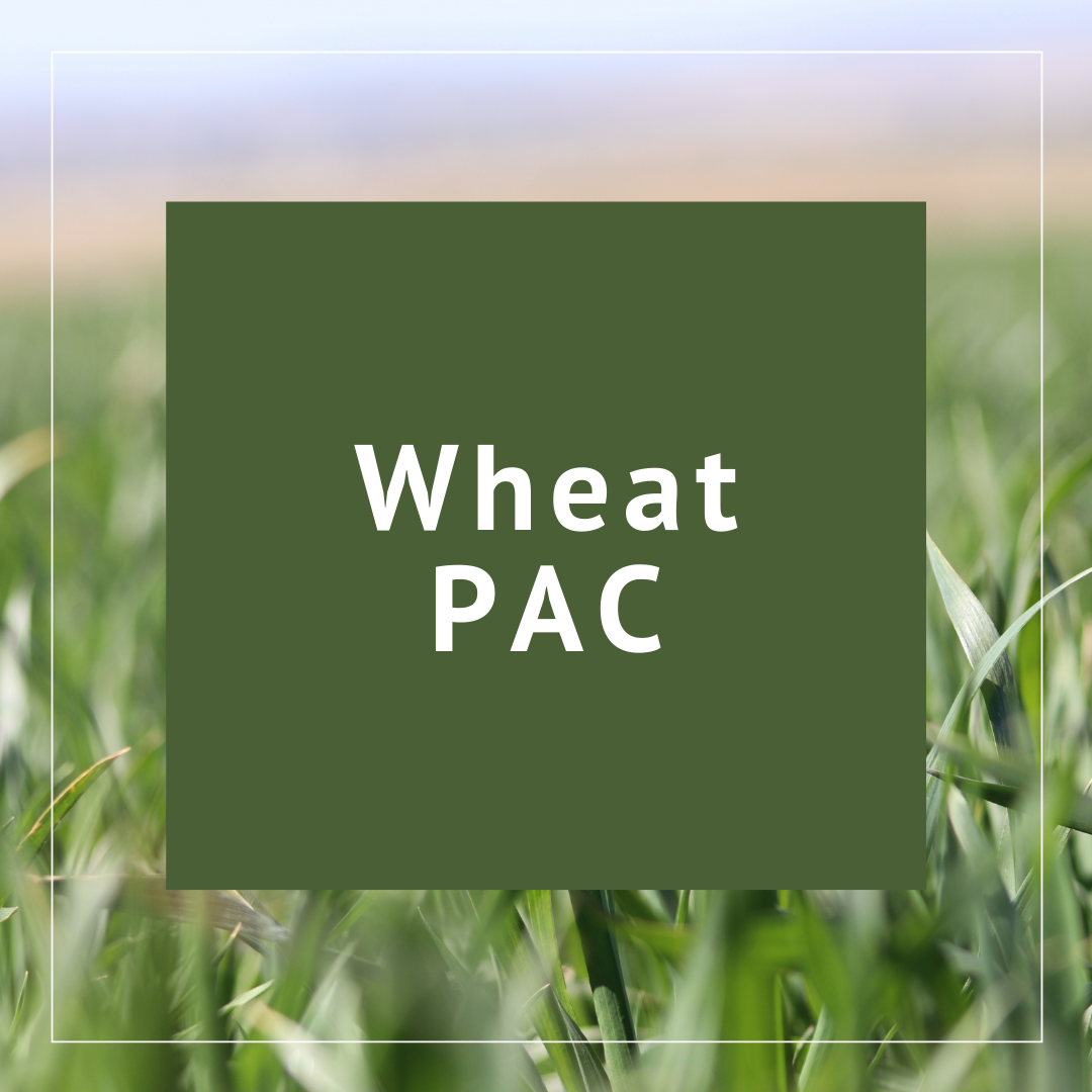Oregon Wheat PAC