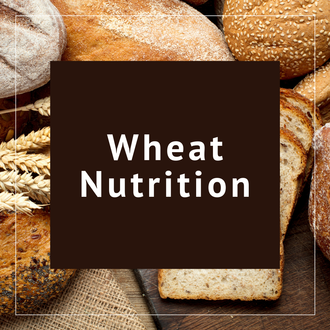 About Wheat Nutrition