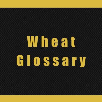 Wheat Glossary