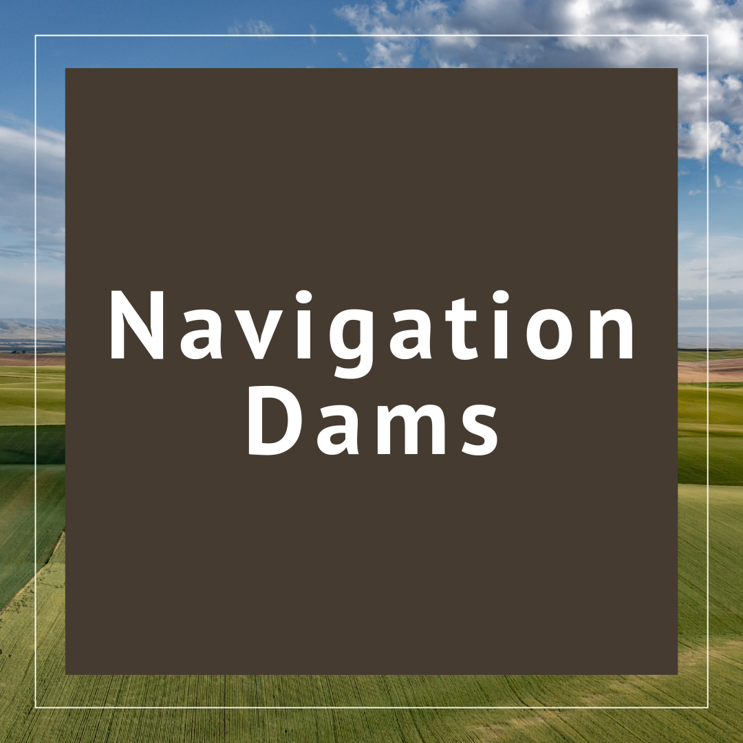 Navigations Dams