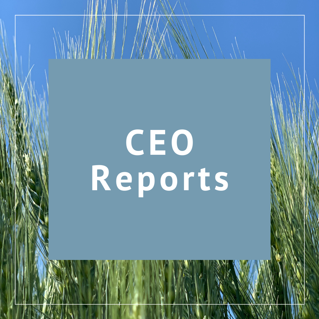 CEO Reports
