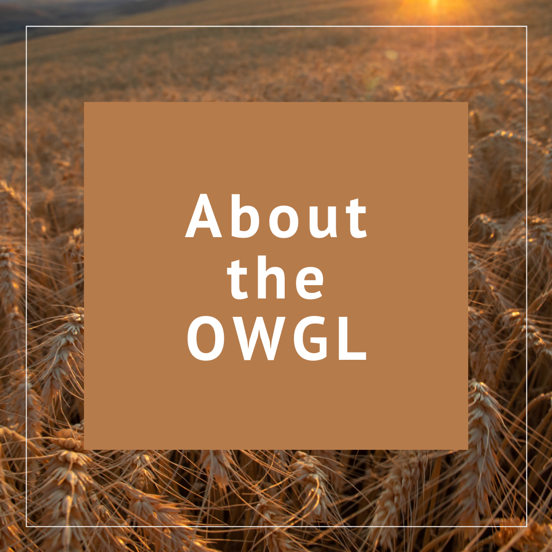 More about OWGL