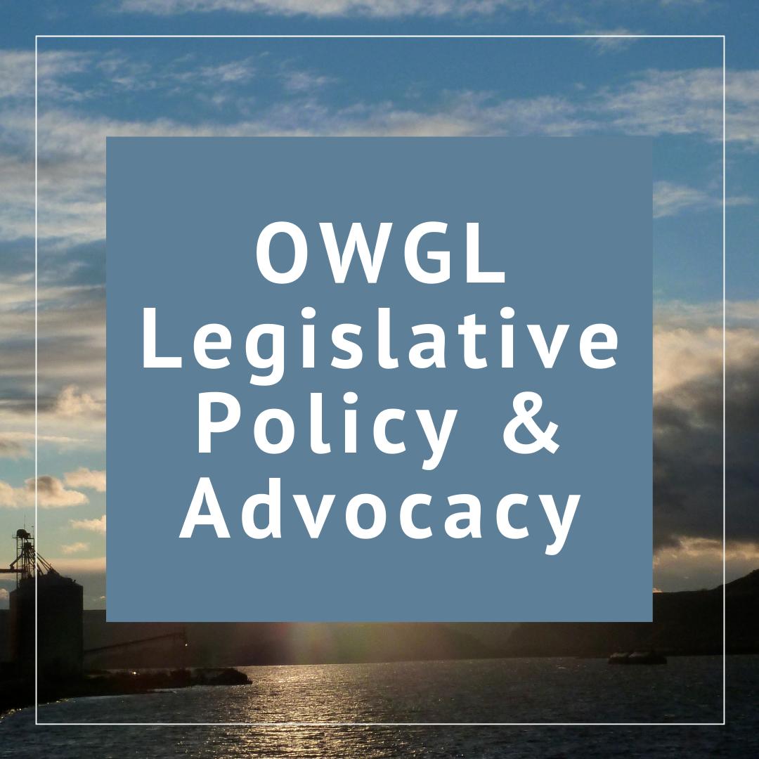 OWGL Advocacy Efforts