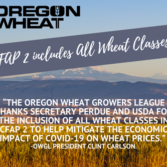 OWGL Welcomes USDA's Decision to Include All Wheat Classes of Wheat in CFAP 2