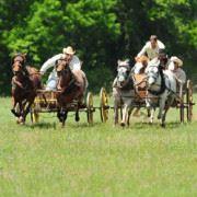 1836 Chuckwagon Race