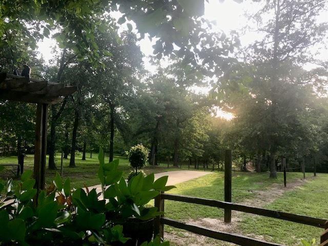 Sabor A Pasion Estate & Vineyard