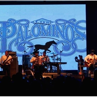 Palomino Fest 2015 Photos