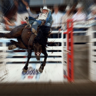 2009 Rodeo Events