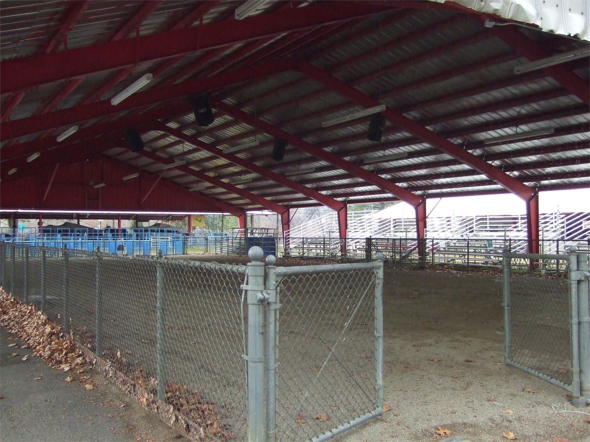 Large Show Ring