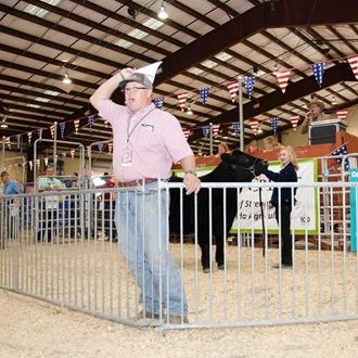2017 Market Animal Auction