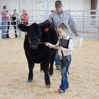 2017 Shows at the Agriplex
