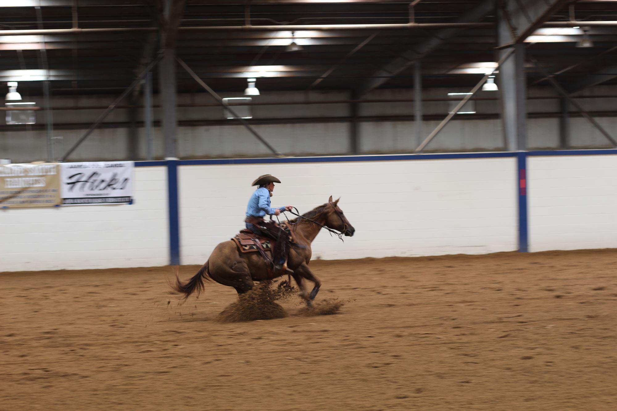 quarter horse sliding with rider