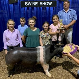 Day 6 - Livestock Shows 2020