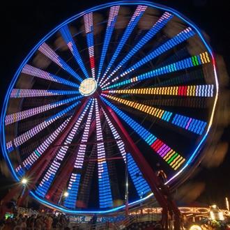 WIlson County Fair - 2014